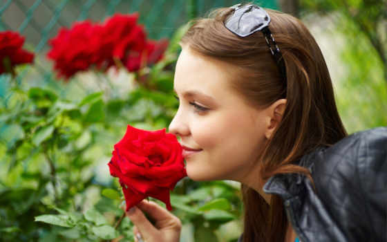 роза, red, roses, девушка, girls, девушек, природа, роз, цветы,