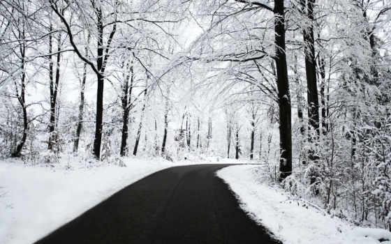 yol, manzarası, karl