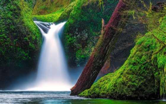 река, columbia, орлан, oregon, falls, ущелье, чаша, заводь, punch,