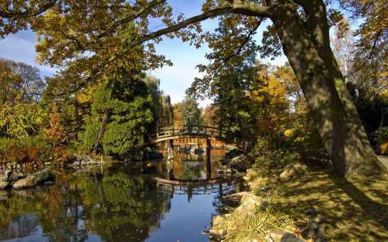 полировка, province, japanese, studentportal, wroclaw, garden, poland,