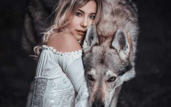 волк, девушка, loups, qui,