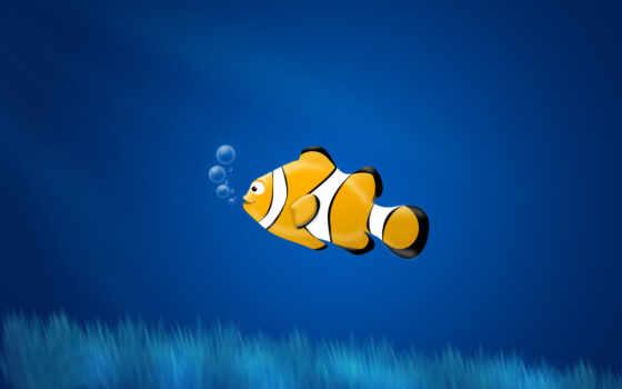 water, vodorosl, bubble, fish