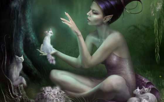 fantasy, кот, фэнтези