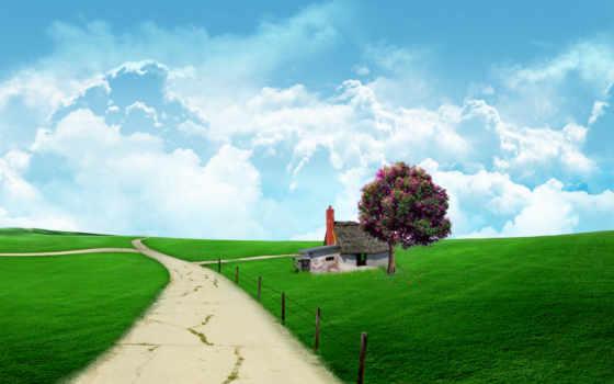 открытки, разных, разрешениях, июнь, природа, весна, цветущего, giza, report, красивые, tochka,