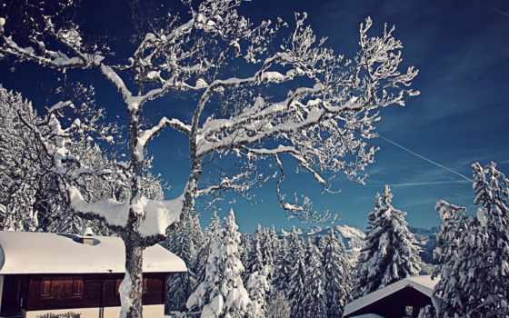 winter, снег, swiss, eli, домики, широкоформатные, trees, швейцария, горы,