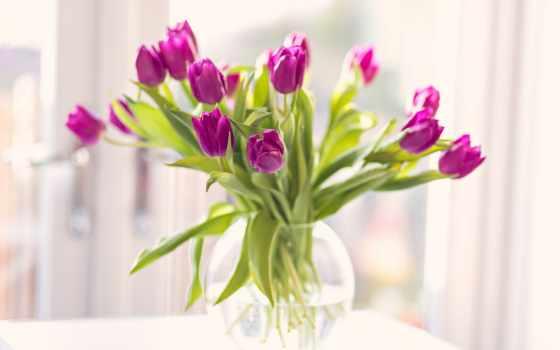 тюльпаны, вазе, тюльпанов, ваз, столе, ваза, купить, букет, красные,