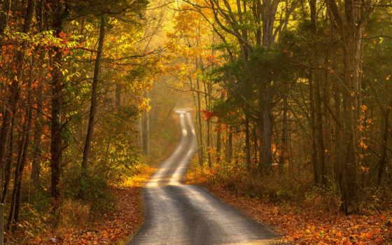 осень, пейзаж