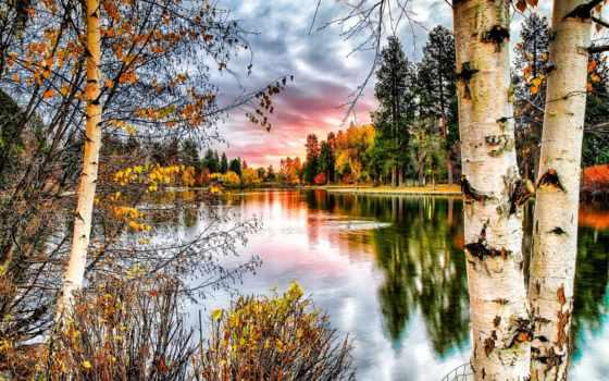 природа, trees, осень, landscape, березы, растущие, ствол, берегу, река, широкоформатные, небо,