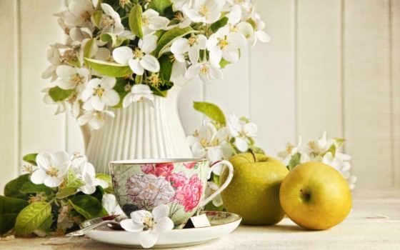 чашка, кувшин, чай, жасмин, цветы, яблоки, натюрморт, еда, картинку,