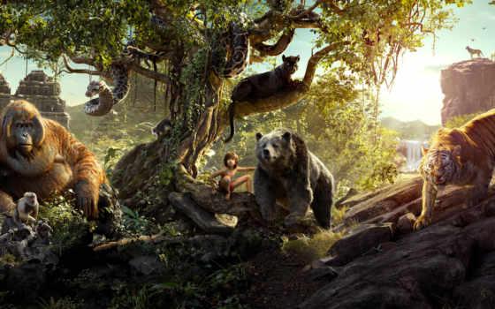 книга, джунглей, jungle, фильмы, сниматься, медведь, маугли,
