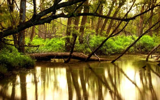 природа, река Фон № 16294 разрешение 1920x1200