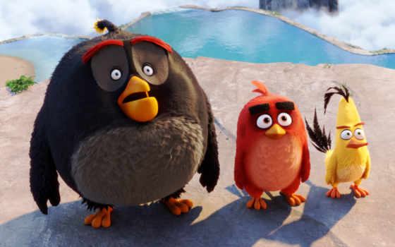 birds, angry, кинотеатр, movie,