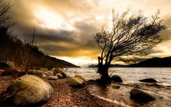 природа, дерево, камни, река, мрак,