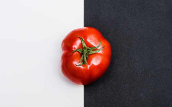 free, images, photos, tomato, are, pixabay, tomatoes, grosicki,