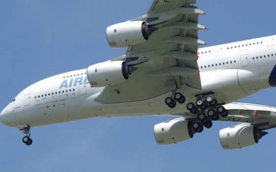 airbus, авиация, wings