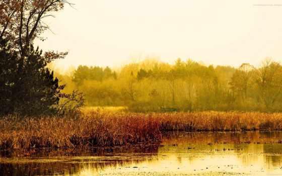 landscape, осень, пейзажи