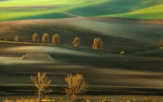 поле, landscape, trees, природа, холмы, margin, пейзажи -,