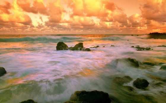 dreams, coastal, hawaii, побережье, images, west, free, apparel,