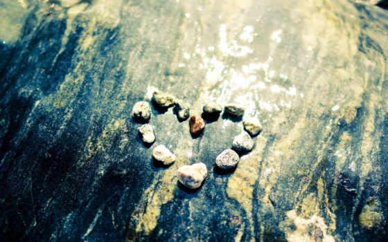 любов, сердце, vesna, эмоции, love, кошка,