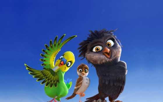 stork, ричард, мультфильмы, характер, фильмы, аисты, tochka, воробей,