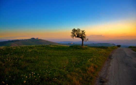 красивые, summer, ясен, контакти, вечер, тих, разные, небо, природа,
