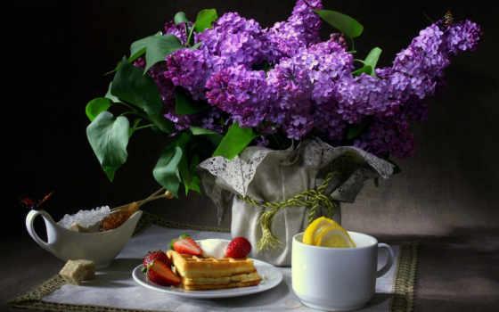 цветы, сиреневый, бабочки