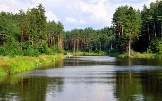 лес, литва, reki, лаздияй, река, канал, природа, августовский, картинка, литвы,
