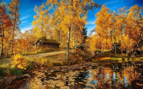 осень, природа, пруд, лес, осени, домики, красиво, норвегия,
