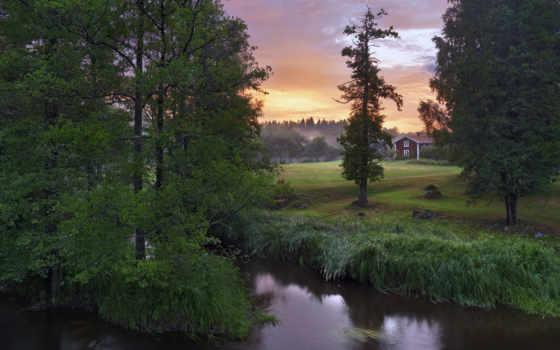 suecia, sweden, paisajes, belleza, natural, temporadas, трава, paisaje,