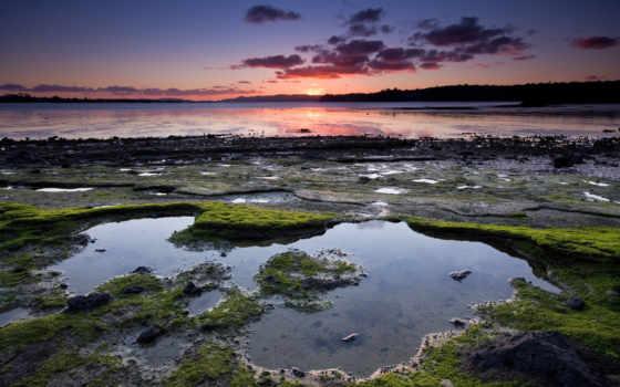 грунт, болотистая, закат, почвы, pearl, природа, www, сиреневый, озере, world, this,