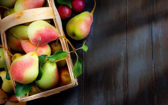 фрукты, осень, яблоки, листва, корзина, урожай,