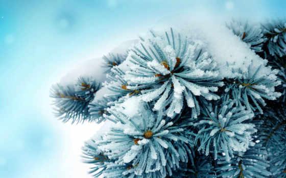 winter, красивые, снеговик, елочка, снег, страница, природа, год, christmas, прохождение, new,