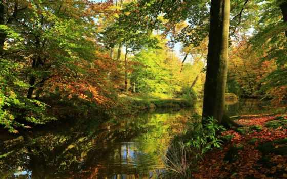 осень, морей, богатства, картинка, природа, trees, игры, peizazi, pr, отражение,