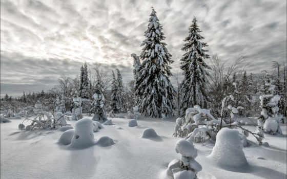 чуприкова, владимира, мар, winter, зимы, году, этом, настоящей, уже,