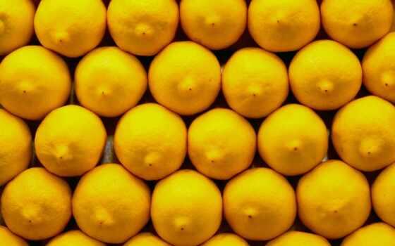 yellow, lemon, цитрус