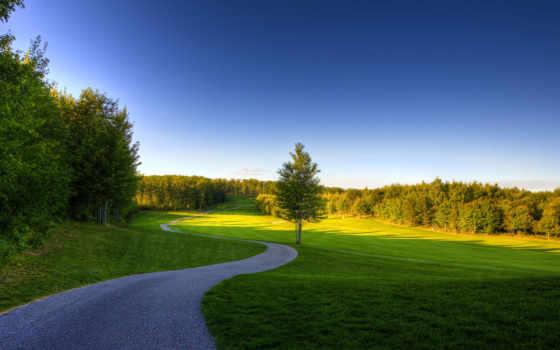 природа, трава, небо