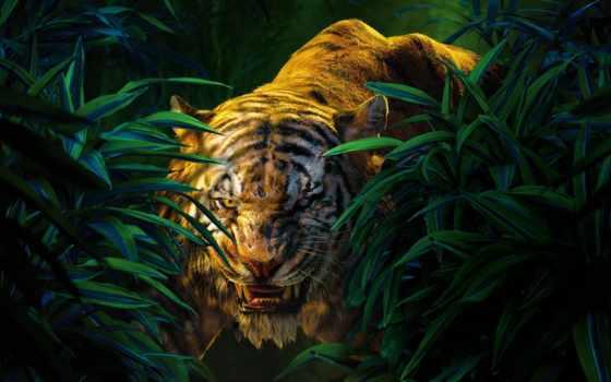 jungle, книга, khan, фильмы, джунглей, shere, персонажи,