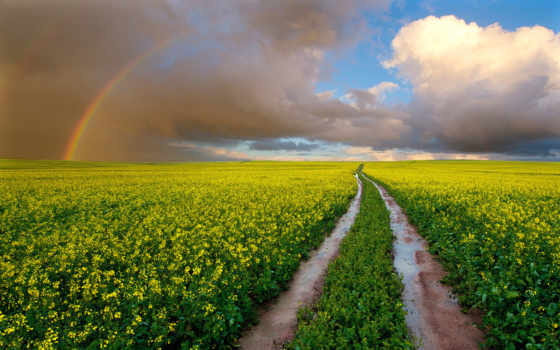 радуга, небо, дорога, природа, oblaka, поле, красивые, мокрая,