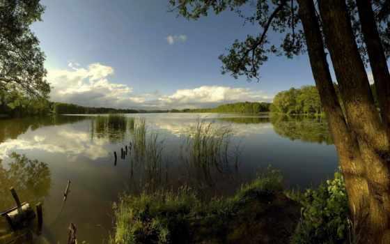 рыбалка, озеро, рыбалки, лосвидо, лесное, озера, место,