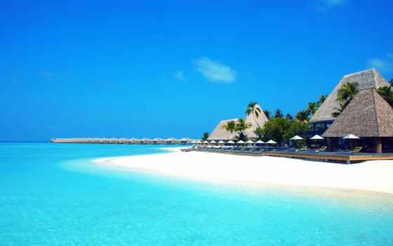 море, пляж, песок, небо, palm, she, отдых, share, природа, subscribe