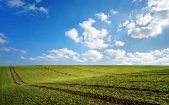 поле, весна, зелёный, природа, oblaka, весенние, traces, работы, нео,