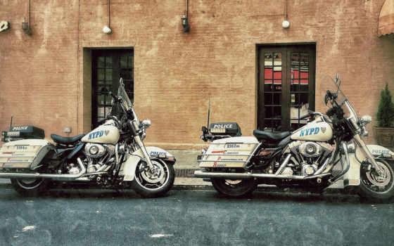 davidson, harley, мотоциклы