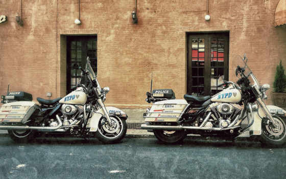 davidson, harley, мотоциклы Фон № 96136 разрешение 1920x1080