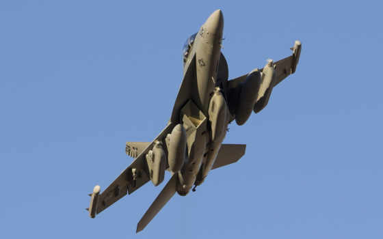 thunder42 vaq-135 black ravens f-18g