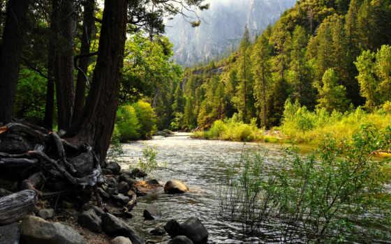 taiga, река, горная, лес, горы,