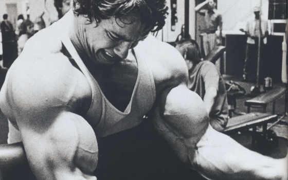 arnold, schwarzenegger, актер, продюсер, bodybuilding,