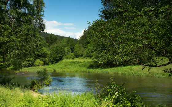 германия, german, природа, река, schwarzach, desktop, картинка, бавария,