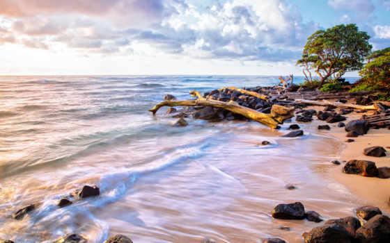 playa, arena, piedras, agua, ocean, fondo, rboles, ondas, море, best
