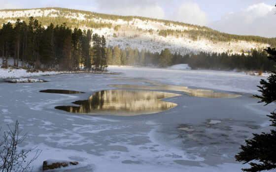 winter, природа, love