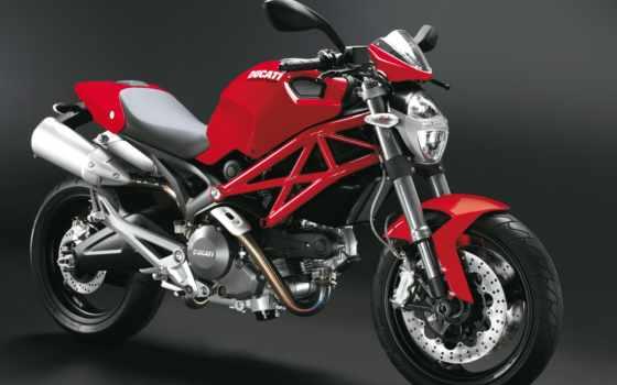 ducati, monster, мотоциклов